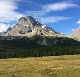 18 settembre – Leggi il resoconto della gita all'Alpe Veglia