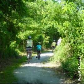 22 agosto: In mountain bike a Fondotoce