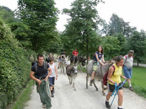 10 novembre: Leggi il resoconto del Trekking del giugno scorso