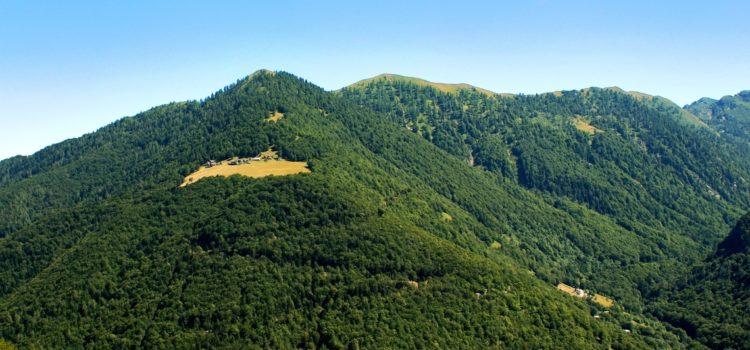 25 Giugno – Escursione Valle Loana – Alpe Cortino